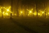 Park Miejski-1