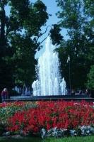 Fontanna w Parku Miejskim-1